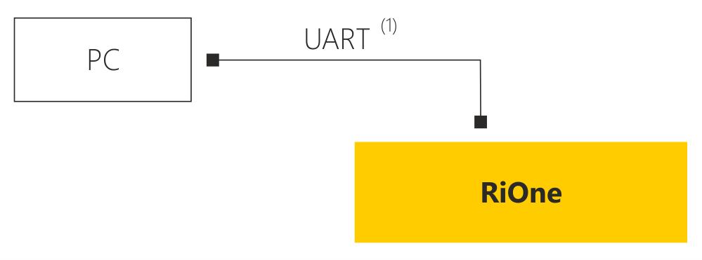 Schemat połączenia RiOne